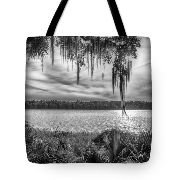 Tote Bag featuring the photograph Lake Wauberg   by Howard Salmon