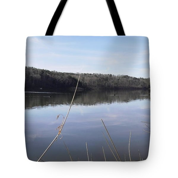 Lake Zwerner Early Spring Tote Bag