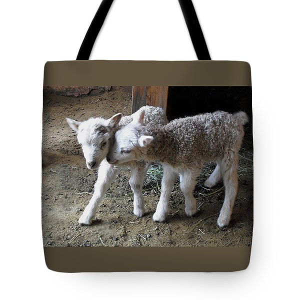 Lambs Tote Bag by Kae Cheatham
