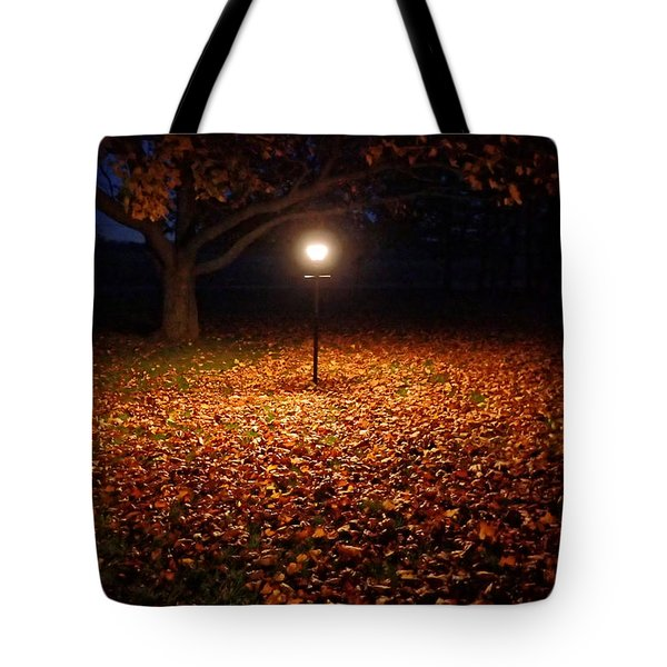 Tote Bag featuring the photograph Lamp-lit Leaves by Lars Lentz