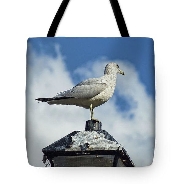 Tote Bag featuring the photograph Lamp Post Eddie by Jan Amiss Photography