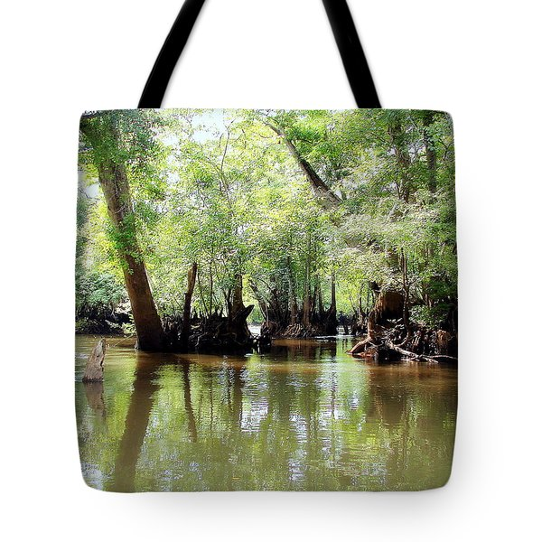Tote Bag featuring the photograph Land Of The Lost by Debra Forand