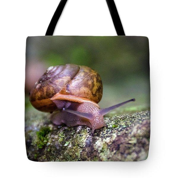 Land Snail II Tote Bag