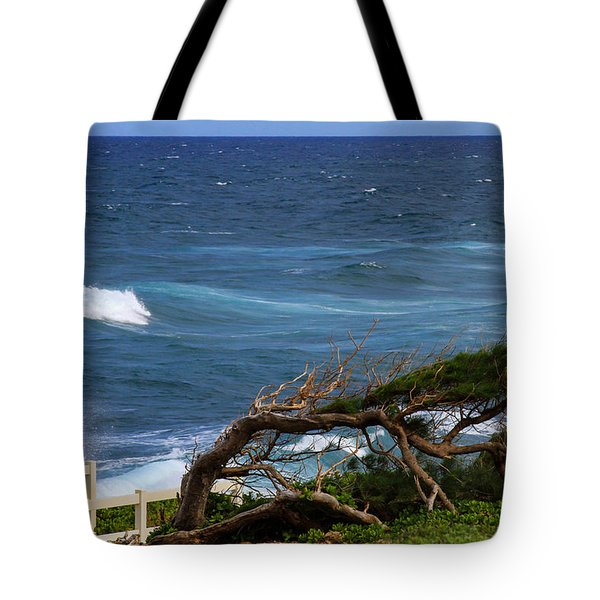 Land Wind And Sea Tote Bag by Bonnie Follett