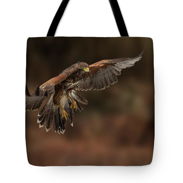Landing Approach Tote Bag