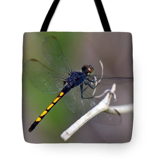 Landing For A Moment..... Tote Bag