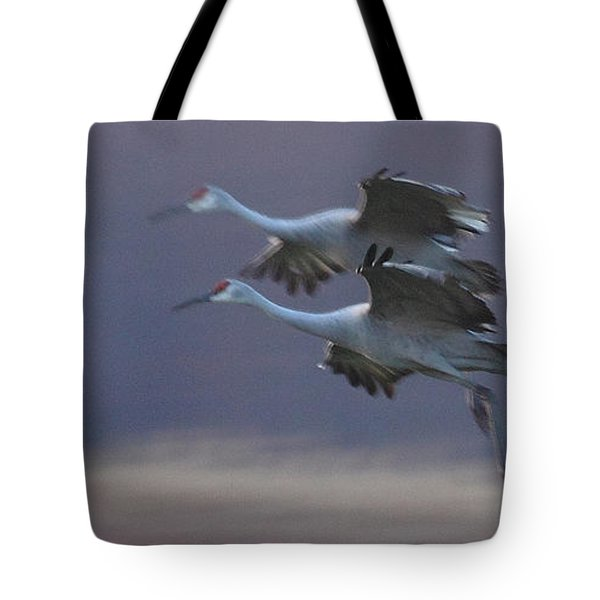 Tote Bag featuring the photograph Landing Gear Down by Shari Jardina