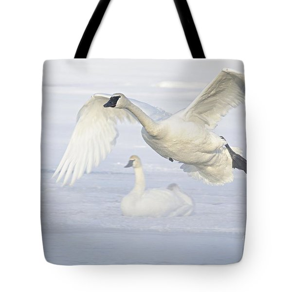 Tote Bag featuring the photograph Landing In The Cold by Larry Ricker