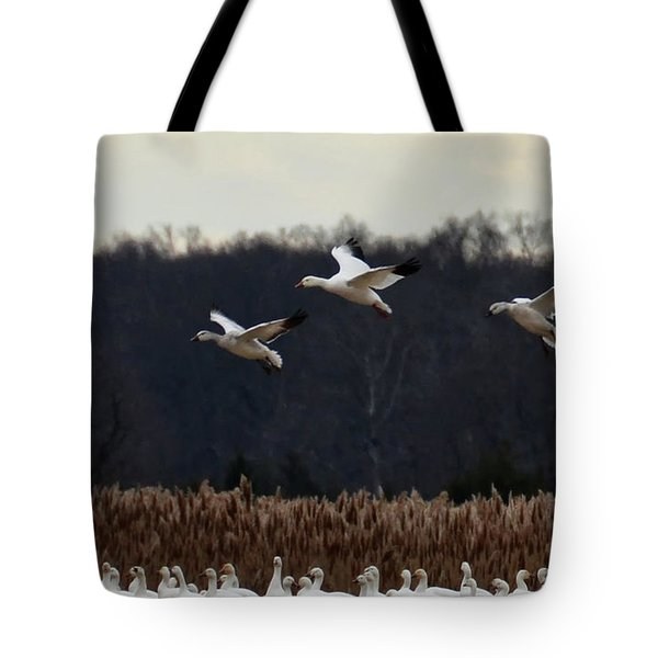 Landing Tote Bag by Tamera James