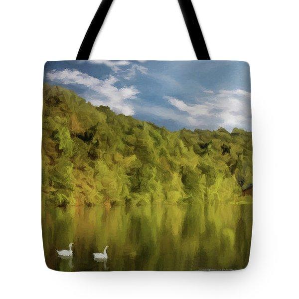Landingville Lake Pennsylvania Tote Bag by David Dehner