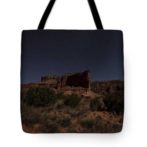 Tote Bag featuring the photograph Landscape In The Moonlight by Melany Sarafis