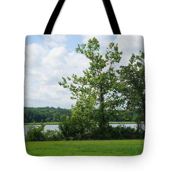 Landscape Photo II Tote Bag