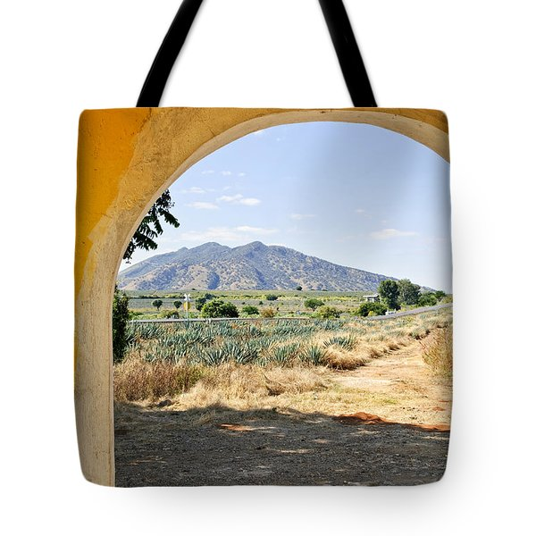 Landscape With Agave Cactus Field In Mexico Tote Bag by Elena Elisseeva