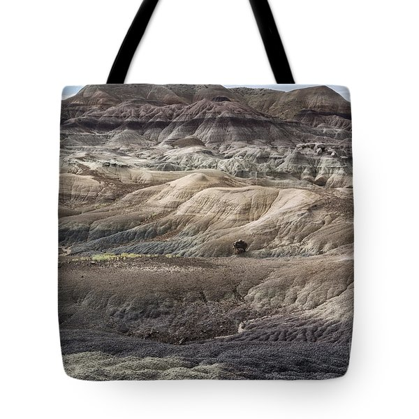 Landscape With Many Colors Tote Bag