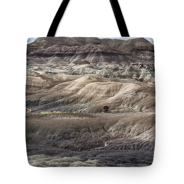 Tote Bag featuring the photograph Landscape With Many Colors by Melany Sarafis