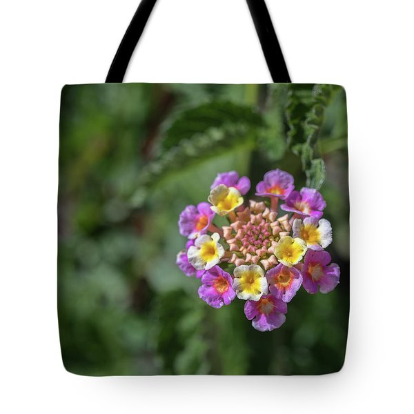 Lantana In Bloom Tote Bag