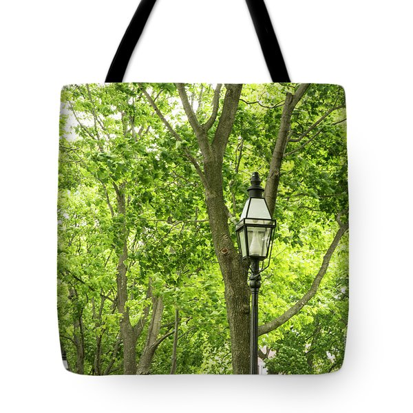 Lanterns Among The Trees Tote Bag