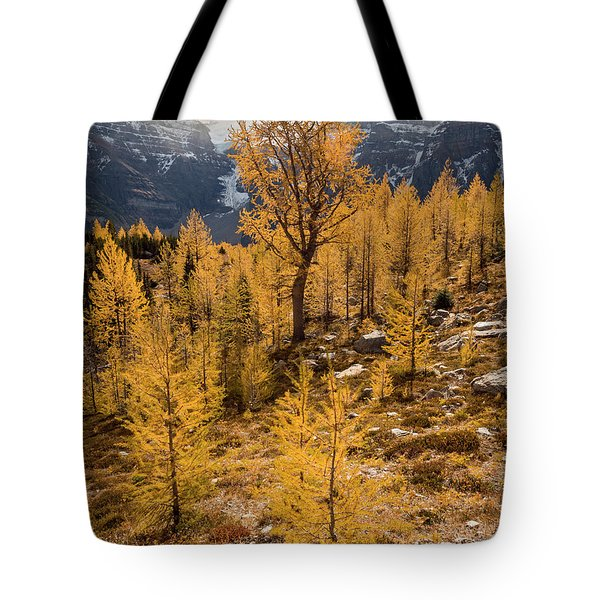 Larch Family Tote Bag
