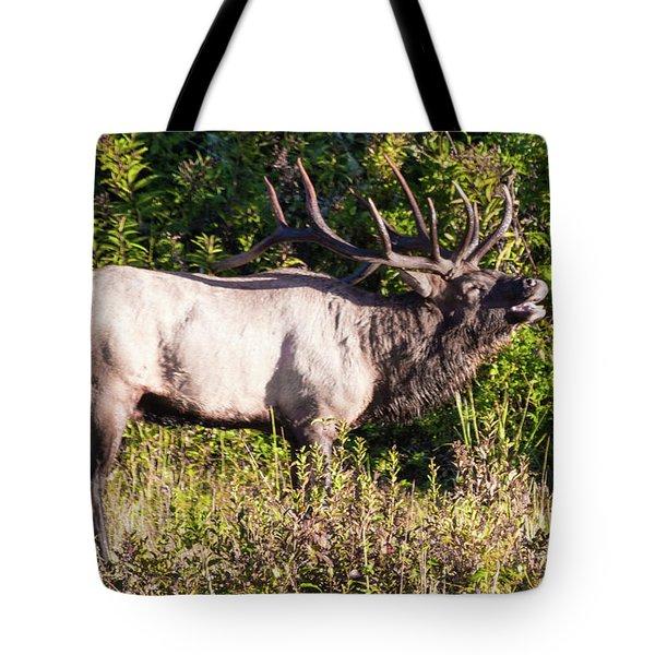 Large Bull Elk Bugling Tote Bag