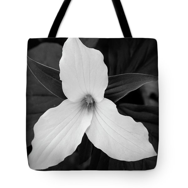 Tote Bag featuring the photograph Large Flowered Trillium 2 by Chris Scroggins