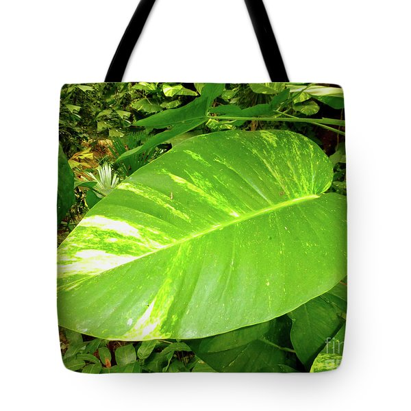 Tote Bag featuring the photograph Large Leaf by Francesca Mackenney