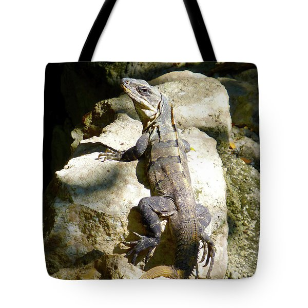 Tote Bag featuring the photograph Large Lizard M by Francesca Mackenney
