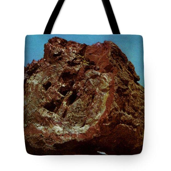 Large Petrified Log  Tote Bag by Ruth  Housley