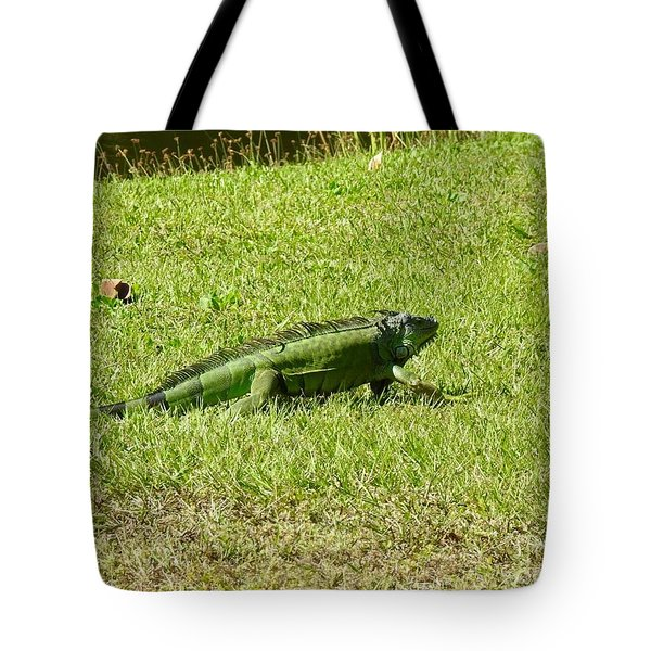 Large Sanibel Iguana Tote Bag