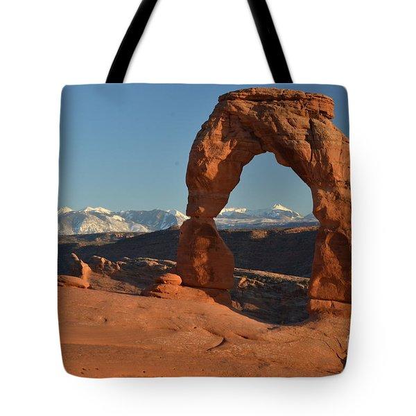 Lasals Framed Tote Bag