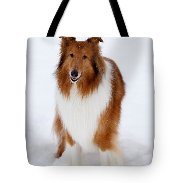 Lassie Enjoying The Snow Tote Bag by Shane Holsclaw