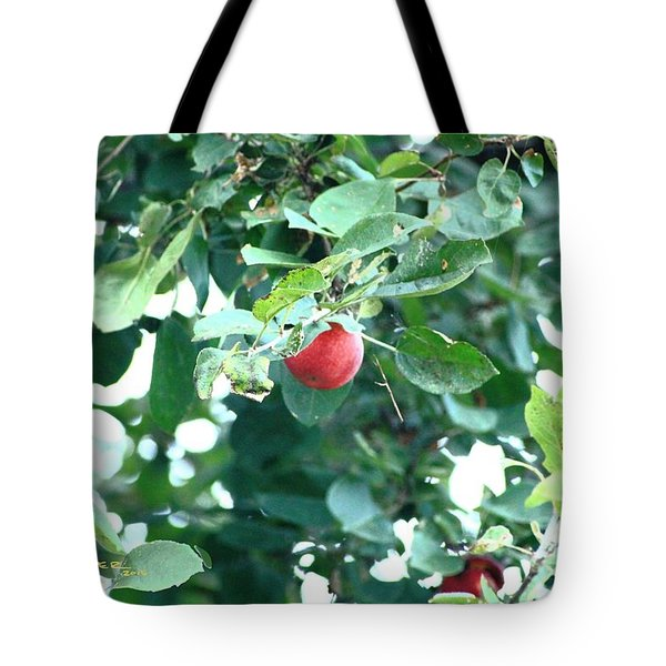 Last Apple Tote Bag