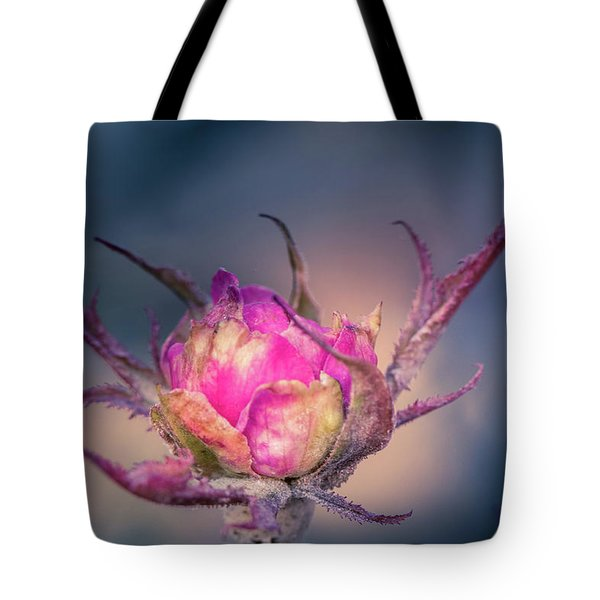 Last Color Of Summer Tote Bag