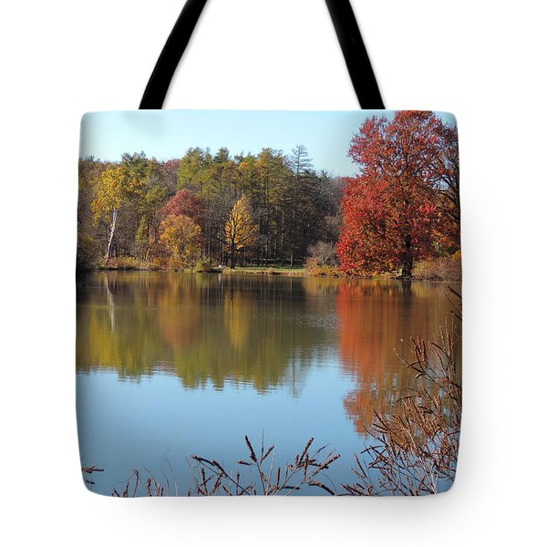 Last Colors Of Fall Tote Bag