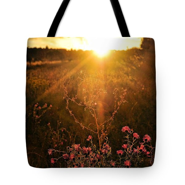 Tote Bag featuring the photograph Last Glimpse Of Light by Jan Amiss Photography