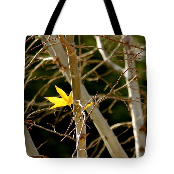 Tote Bag featuring the photograph Last Leaf by Kume Bryant