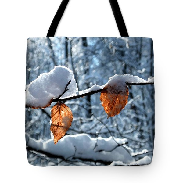 Last Leaves Tote Bag