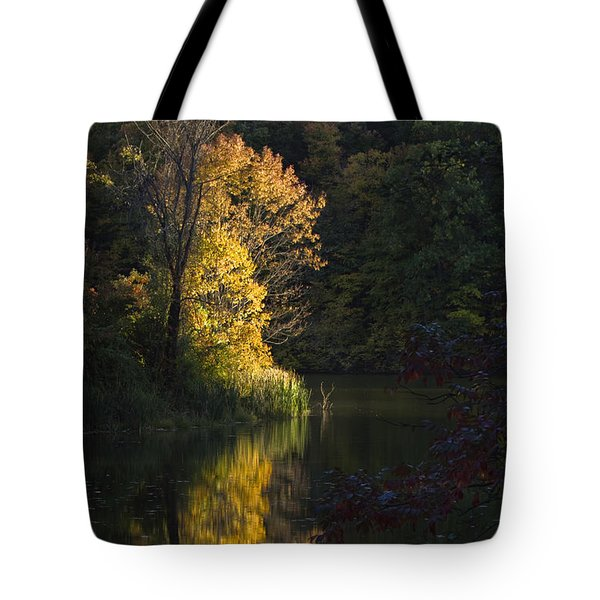 Tote Bag featuring the photograph Last Light - D009910 by Daniel Dempster