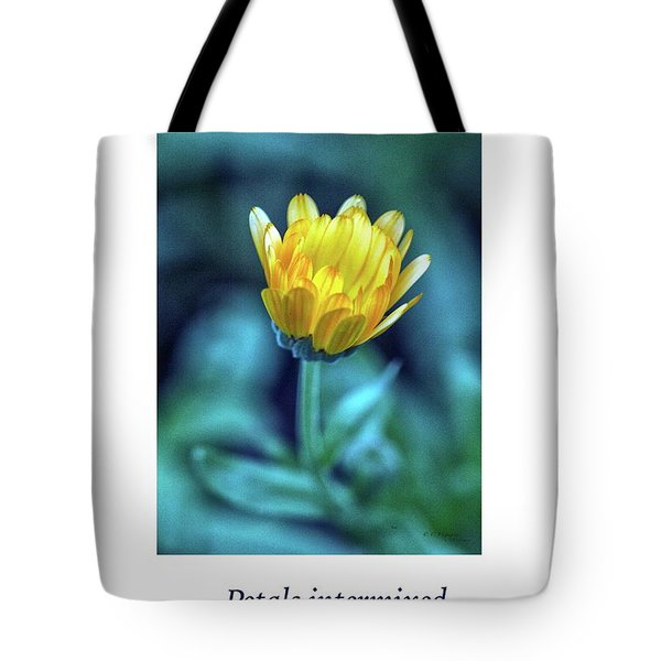 Last Light Haiku Tote Bag