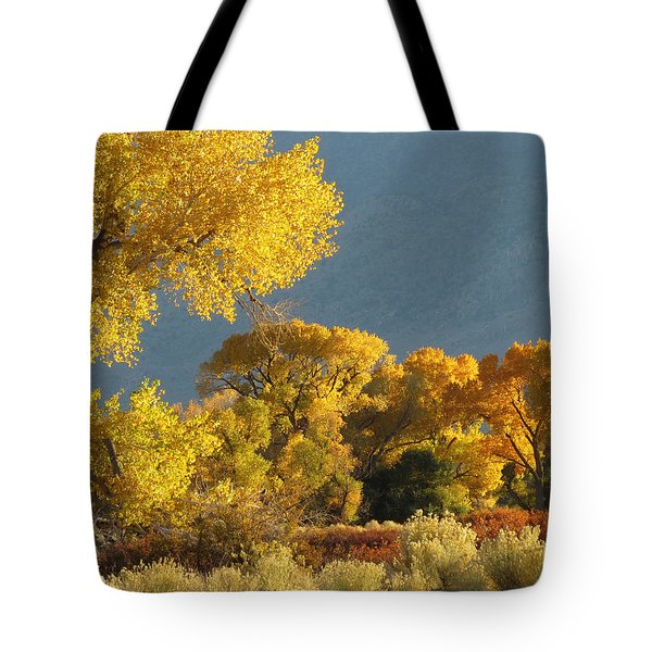 Last Light In Bishop 2 Tote Bag