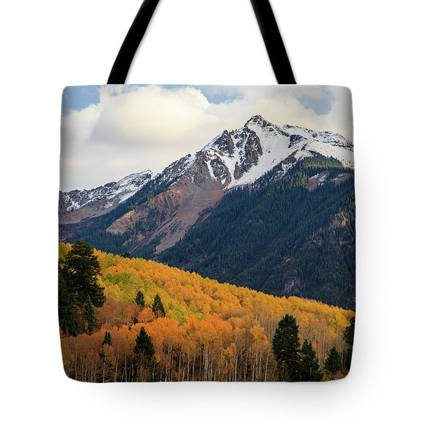 Tote Bag featuring the photograph Last Light Of Autumn by David Chandler
