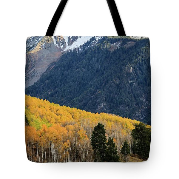 Tote Bag featuring the photograph Last Light Of Autumn Vertical by David Chandler