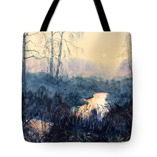 Last Light On Skipwith Marshes Tote Bag