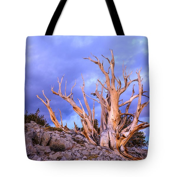 Last Light On The Bristlecones Tote Bag by Joe Doherty