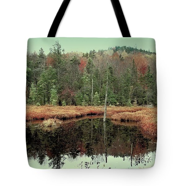 Tote Bag featuring the photograph Last Of Autumn On Fly Pond by David Patterson
