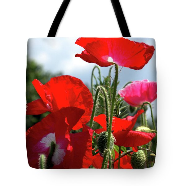 Tote Bag featuring the photograph Last Poppies Of Summer by Baggieoldboy