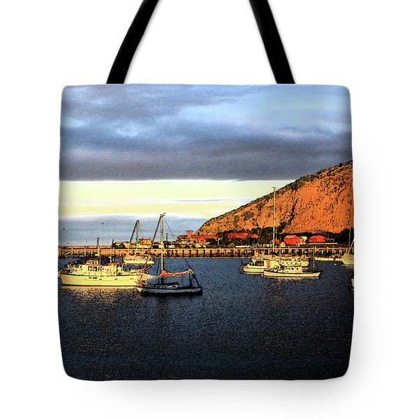 Tote Bag featuring the photograph Last Rays At The Bay by Nareeta Martin