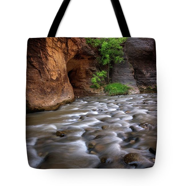 Tote Bag featuring the photograph Last Stand by Dustin LeFevre