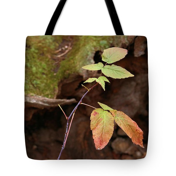 Last Stand Tote Bag by Scott Kingery
