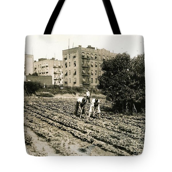 Last Working Farm In Manhattan Tote Bag by Cole Thompson