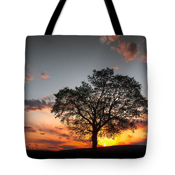 Tote Bag featuring the photograph Lasting Hope by Everett Houser